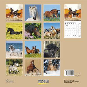 Horses 2017 Umschlag.indd